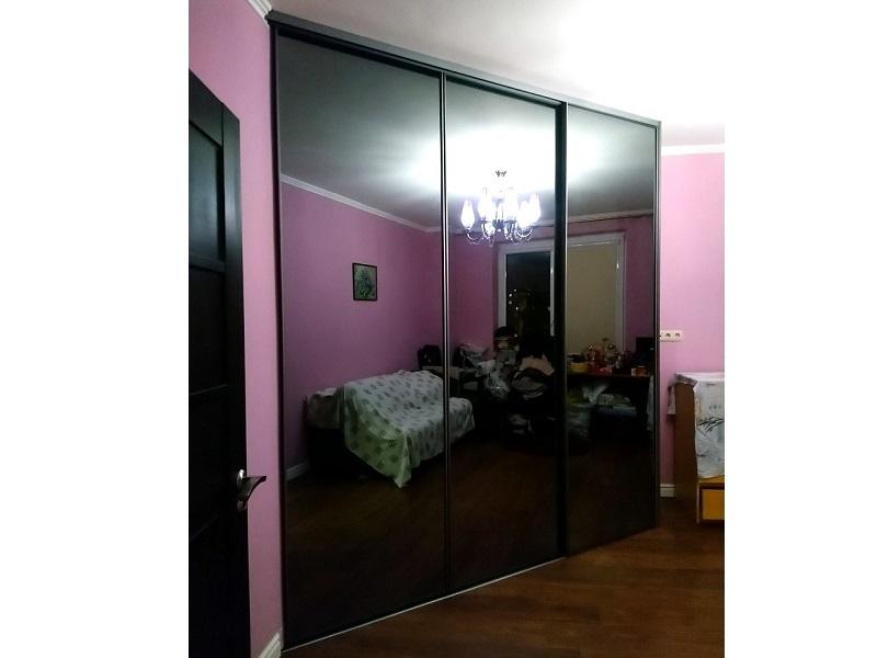 Двери-купе в узком профиле черное стекло
