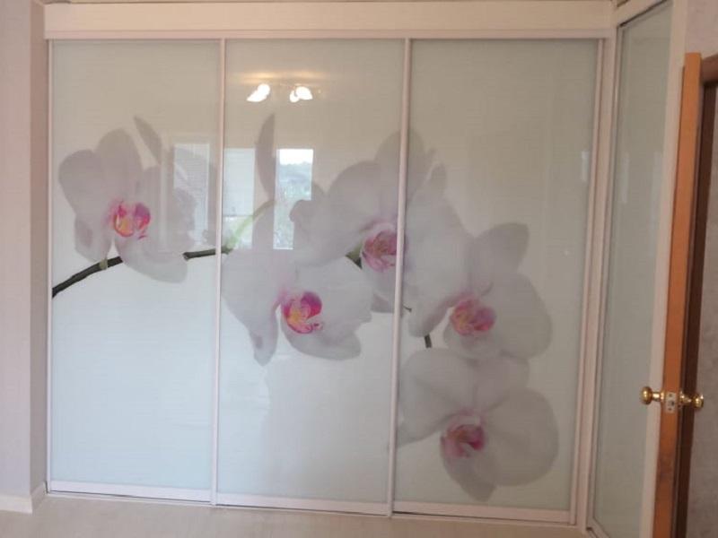 Двери-купе с фотопечатью цветы