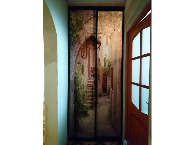 Двери-купе с фотопечатью на балкон